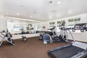 Fitness center with multiple workout equipment, mirror on wall and windows