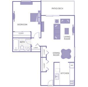 1 bed 1 bath floor plan, kitchen, dining room, living room, patio/deck, 1 linen closet, 3 closets